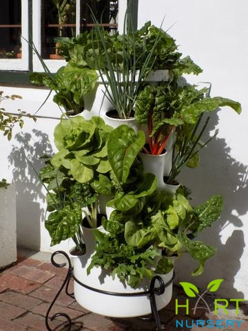 gropro--the-worm-farm-vertical-planter