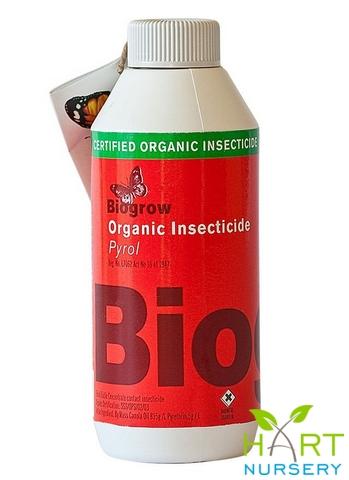 biogrow-organic-insecticide--pyrol
